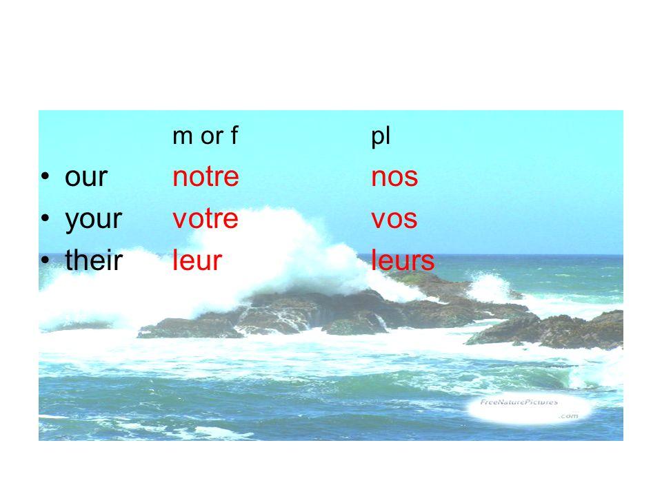 m or f pl our notre nos your votre vos their leur leurs