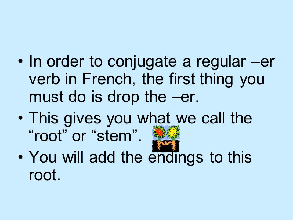 In order to conjugate a regular –er verb in French, the first thing you must do is drop the –er.