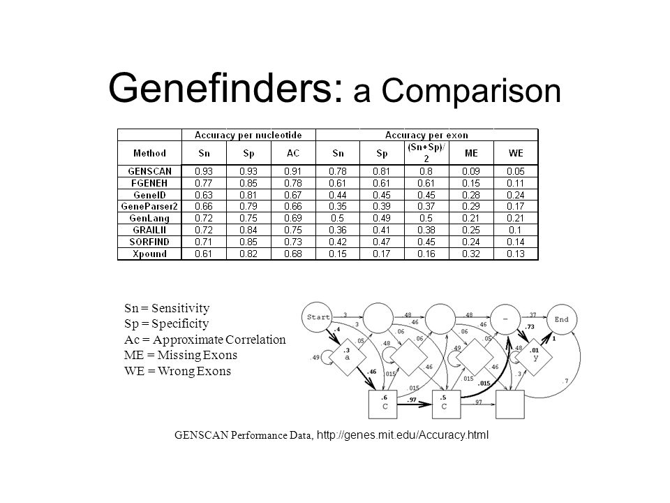 Genefinders: a Comparison