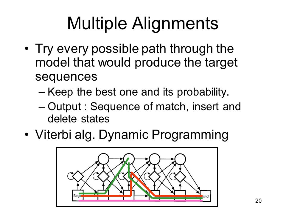 Multiple Alignments Try every possible path through the model that would produce the target sequences.
