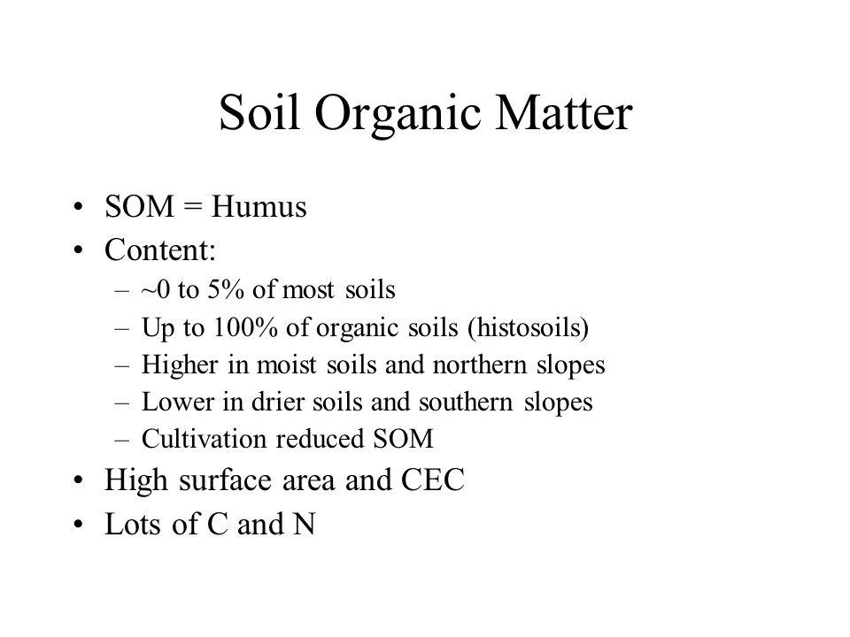 Chapter 9 sorption to organic matter ppt download for Soil organic matter pdf