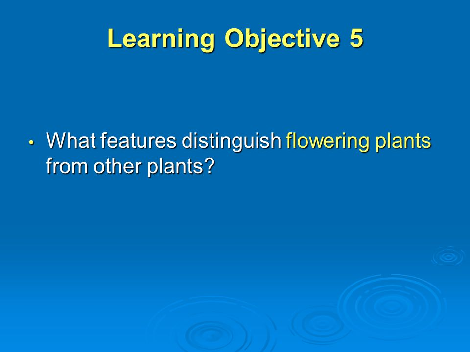 Learning Objective 5 What features distinguish flowering plants from other plants