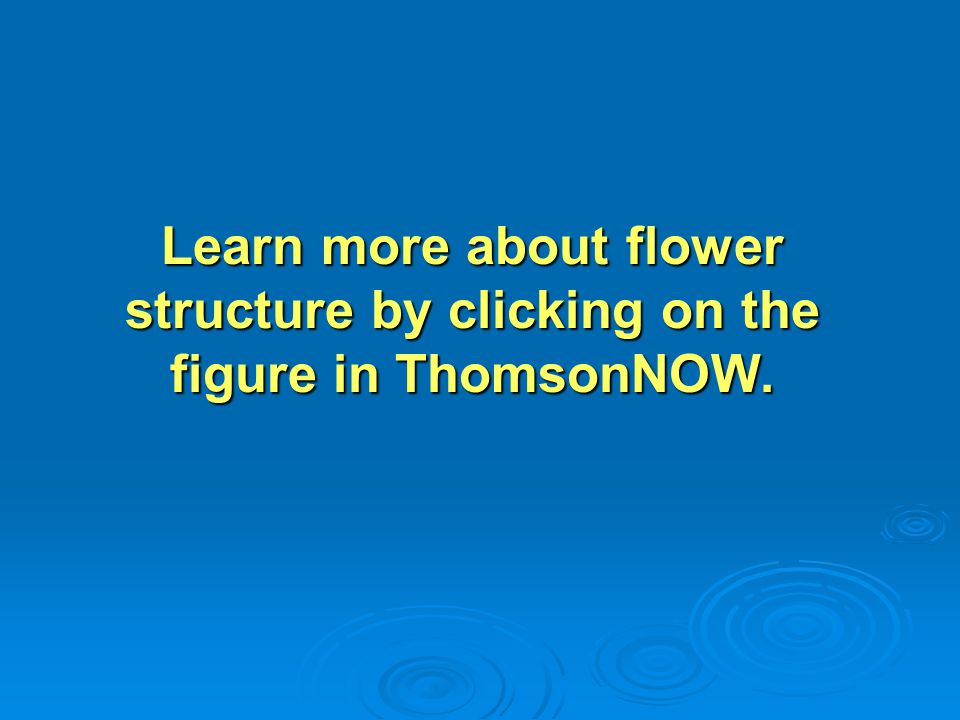 Learn more about flower structure by clicking on the figure in ThomsonNOW.