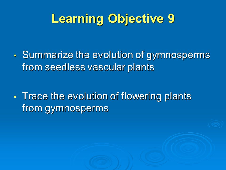 Learning Objective 9 Summarize the evolution of gymnosperms from seedless vascular plants.