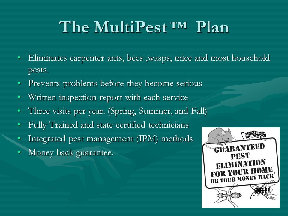 The MultiPest ™ Plan Eliminates carpenter ants, bees ,wasps, mice and most household pests. Prevents problems before they become serious.