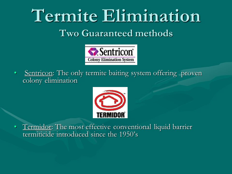Termite Elimination Two Guaranteed methods
