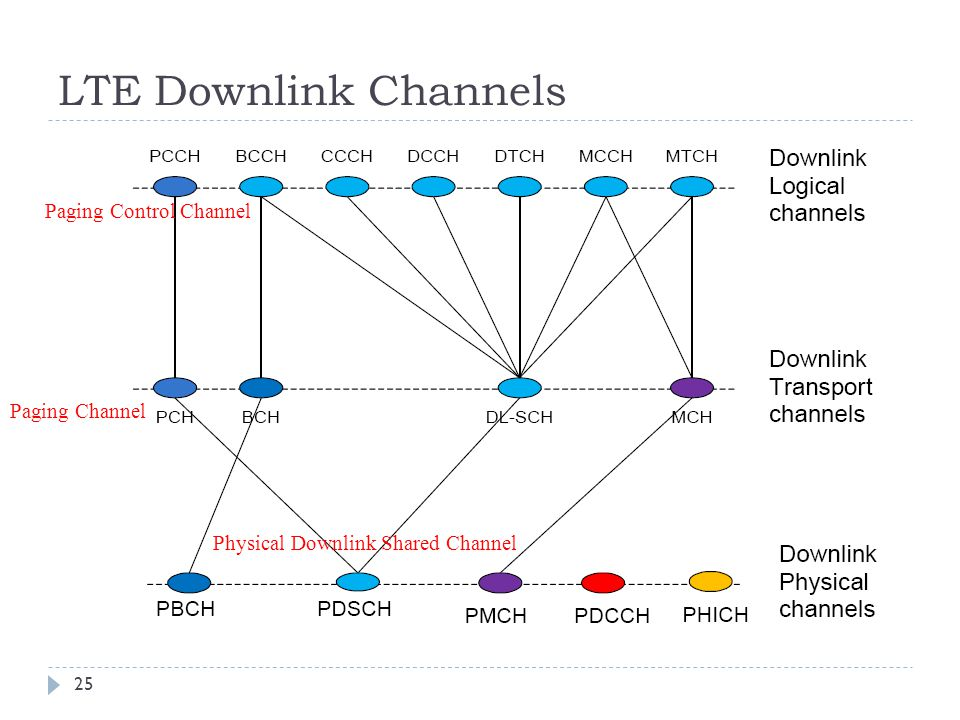LTE Downlink Channels Paging Control Channel Paging Channel