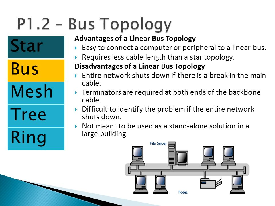 Star Bus Mesh Tree Ring P1.2 – Bus Topology