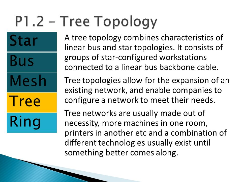 Star Bus Mesh Tree Ring P1.2 – Tree Topology