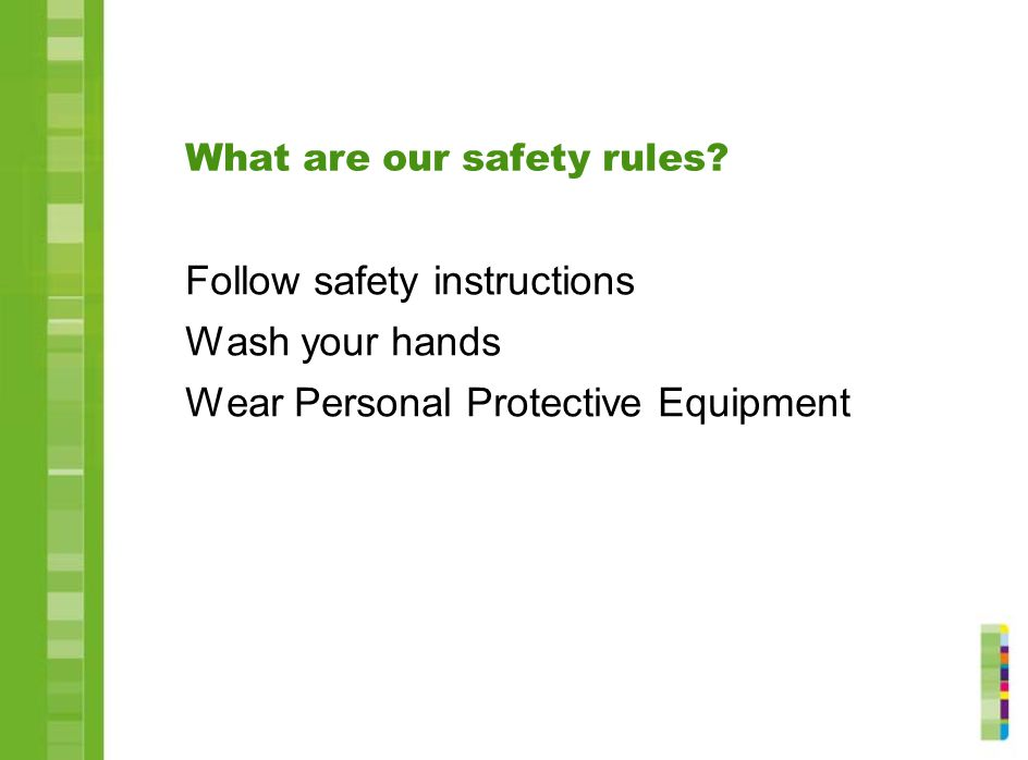 What are our safety rules