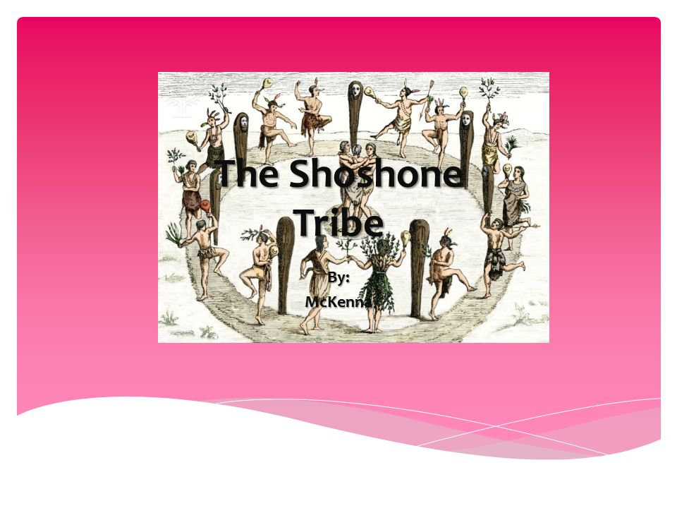 What Type Of Food Did The Shoshone Tribe Eat
