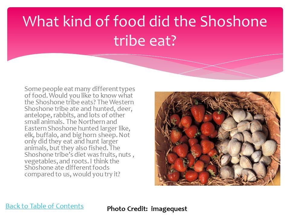 Shoshone Hunting And Gathering
