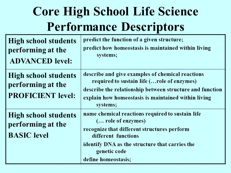 level of performance of high school Performance level descriptions performance level descriptions (plds) describe the range of knowledge and skills students should demonstrate at a given performance level how were the plds developed the new york state education department (nysed) convened the state's content advisory panels (caps) to work on the initial drafts of the plds.