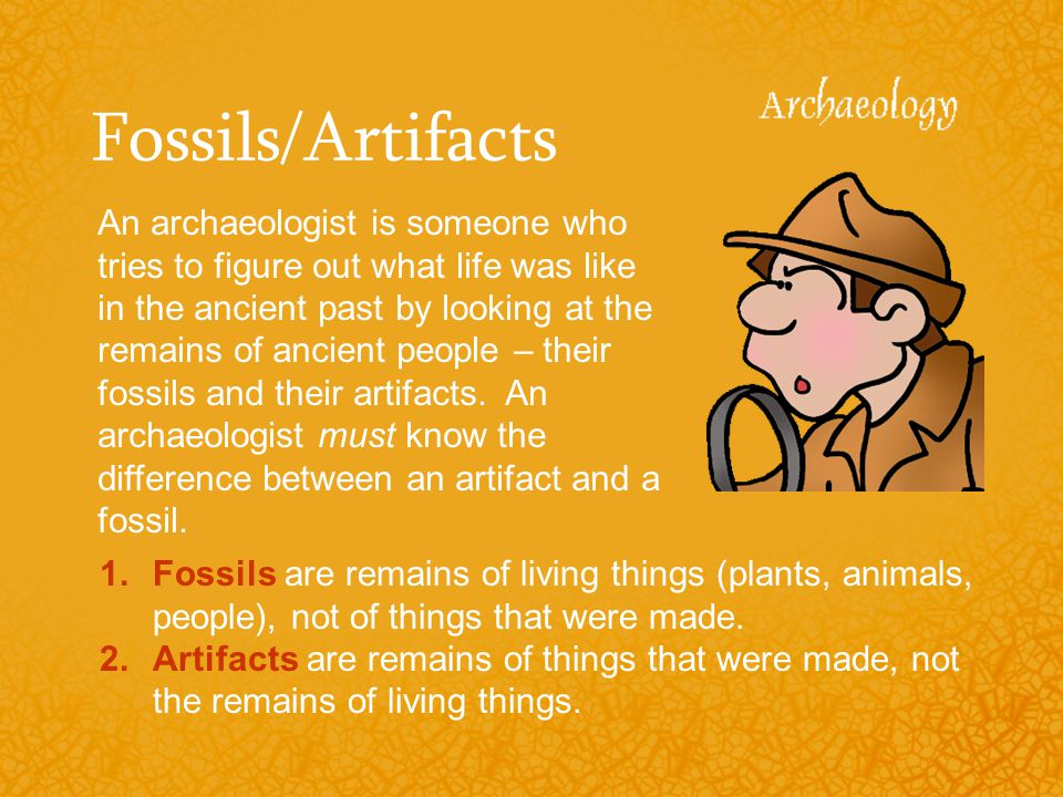 Fossils/Artifacts