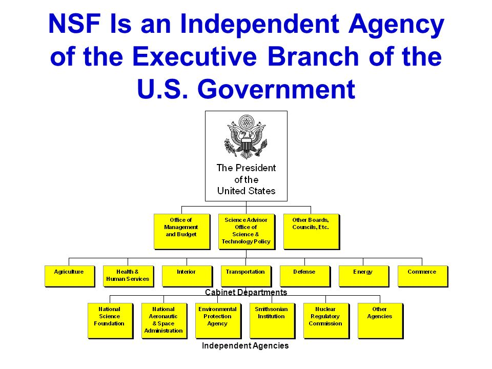 """the executive branch 2 essay Article ii of the constitution grants the president """"the executive power"""" and  this  essay explores this issue and explains why the controversial firing of several."""