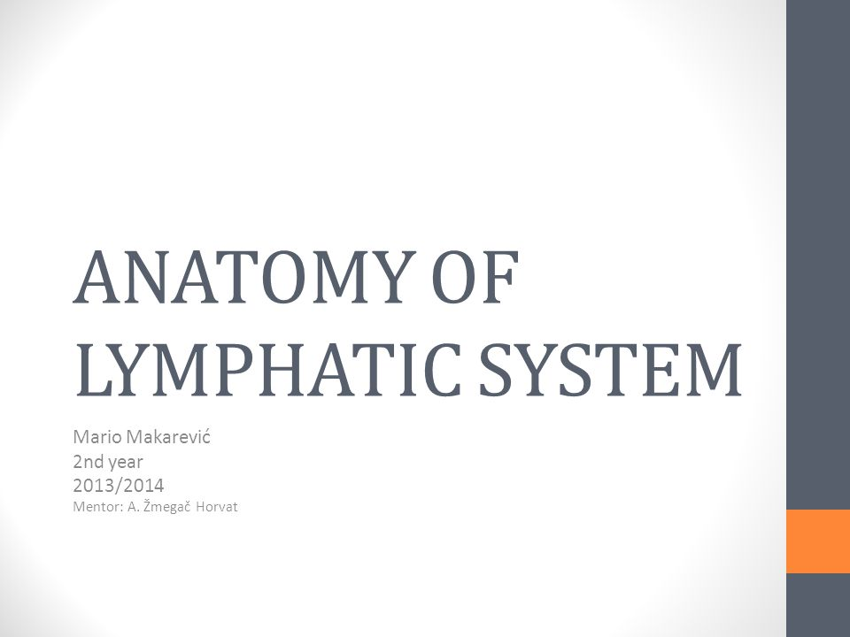 ANATOMY OF LYMPHATIC SYSTEM - ppt video online download