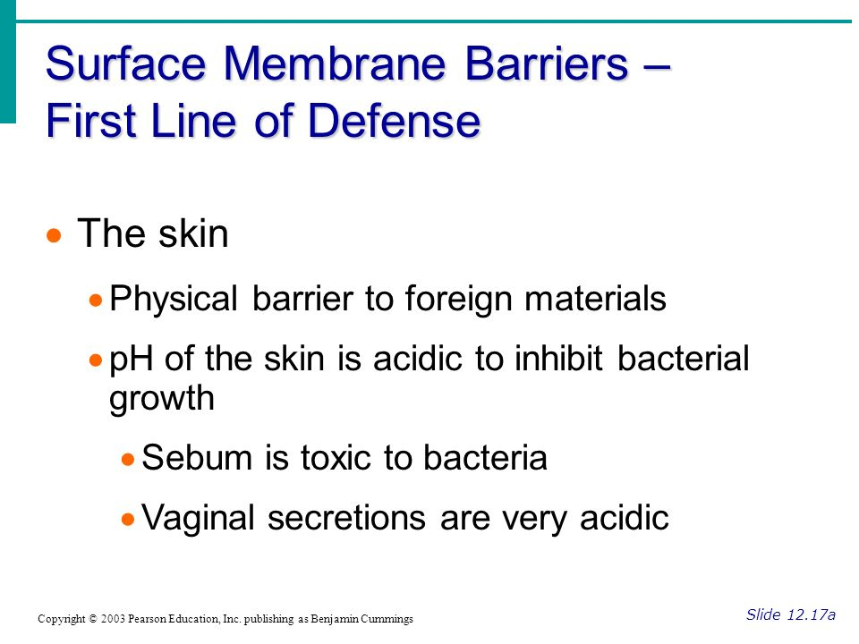 Surface Membrane Barriers – First Line of Defense