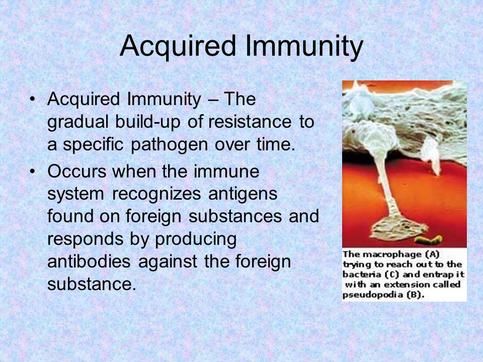 Acquired Immunity Acquired Immunity – The gradual build-up of resistance to a specific pathogen over time.