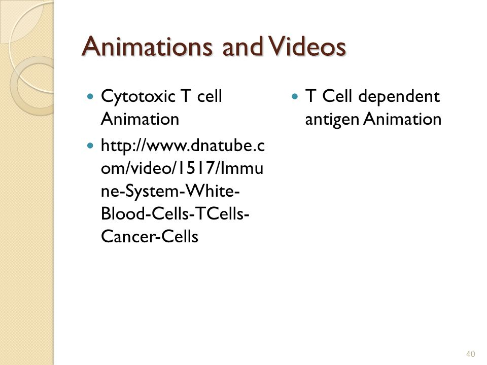 Chapter 14 Lymphatic System and Immunity. - ppt video ...