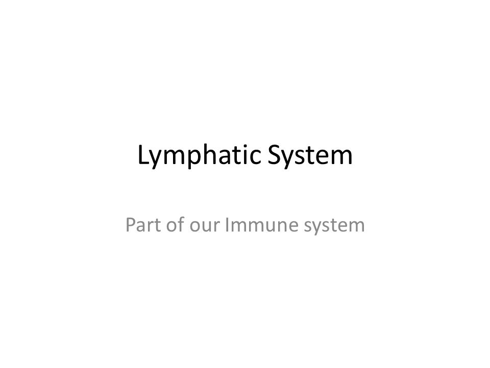 Part of our Immune system