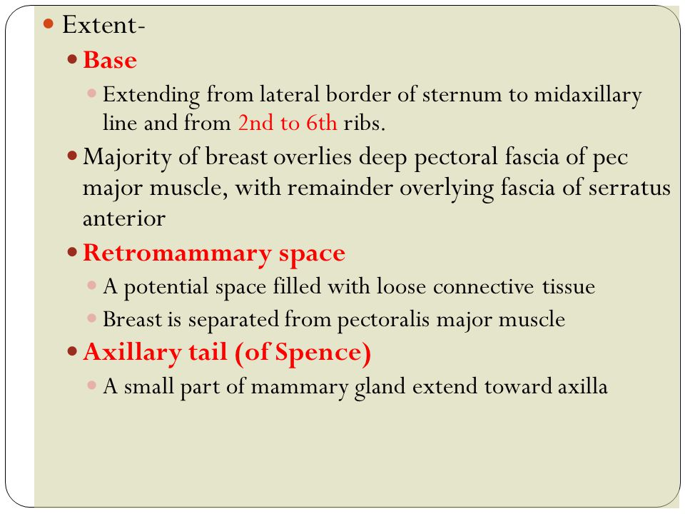 Extent- Base. Extending from lateral border of sternum to midaxillary line and from 2nd to 6th ribs.