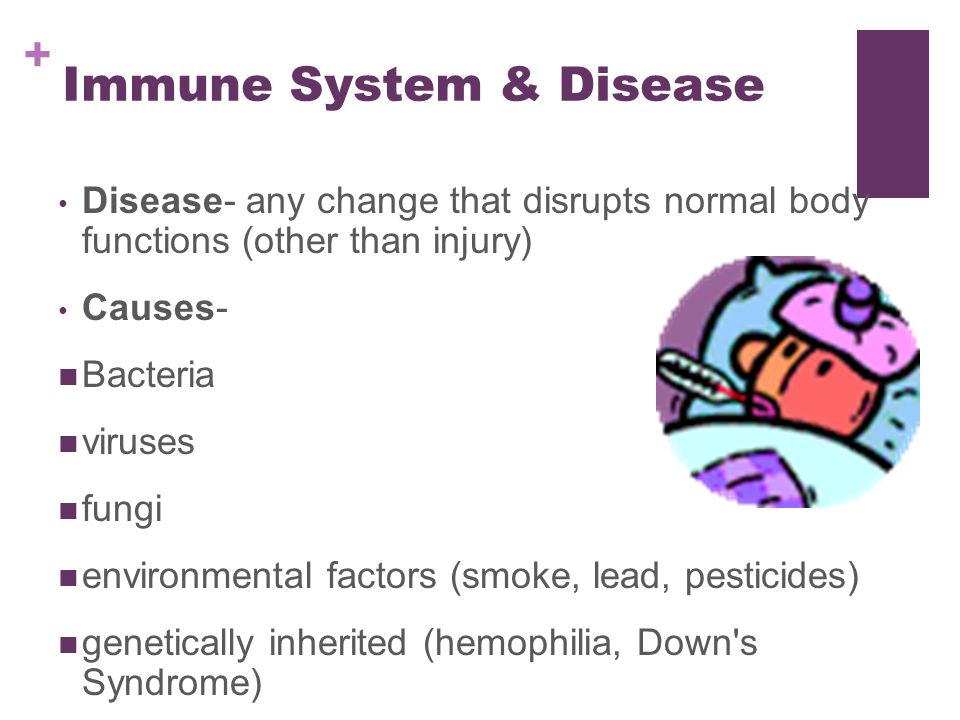 essay questions on immune system Innate immune responses slow infections down, giving the rest of the immune system time to catch up disorders of the innate immune response cause ' autoinflammatory' diseases, often manifesting as spontaneous bouts of illness and fever.