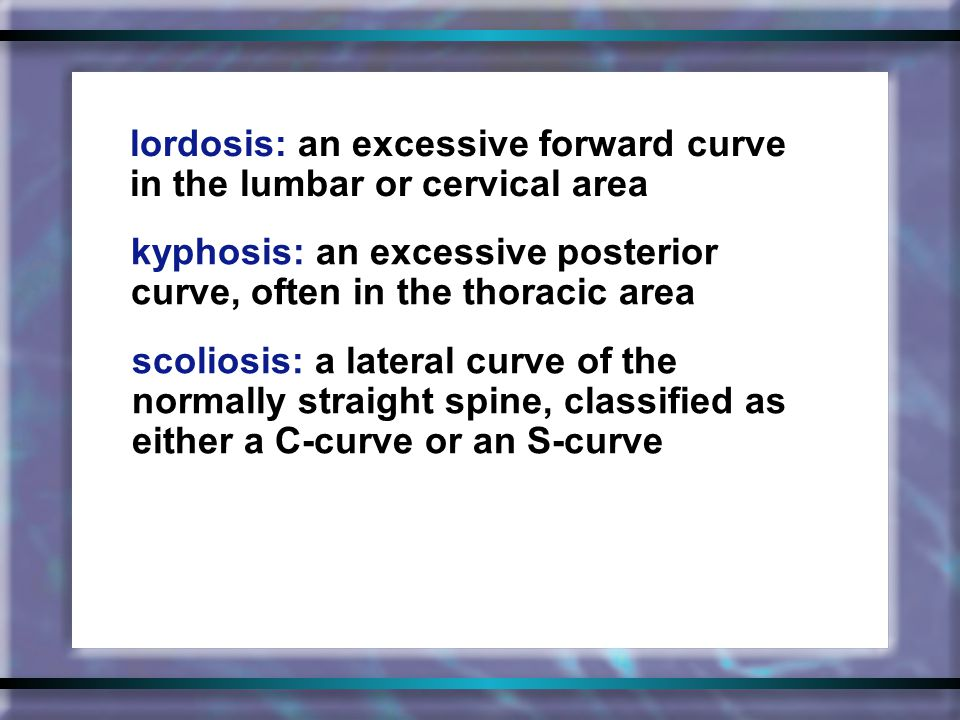 lordosis: an excessive forward curve in the lumbar or cervical area