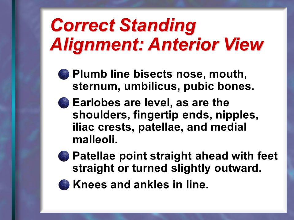 Correct Standing Alignment: Anterior View