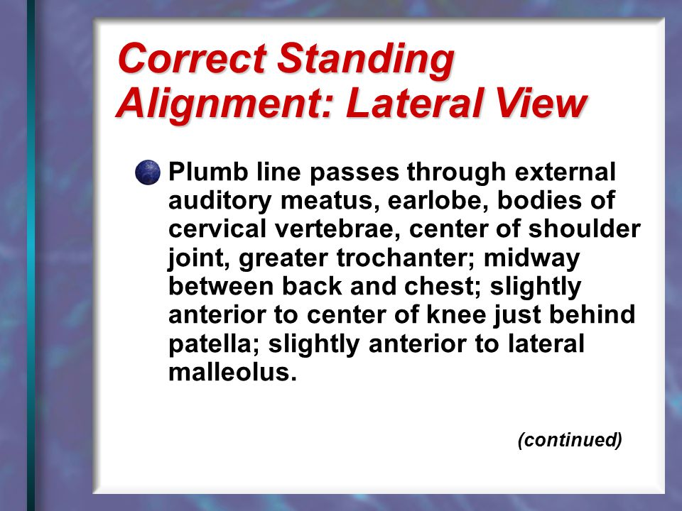 Correct Standing Alignment: Lateral View