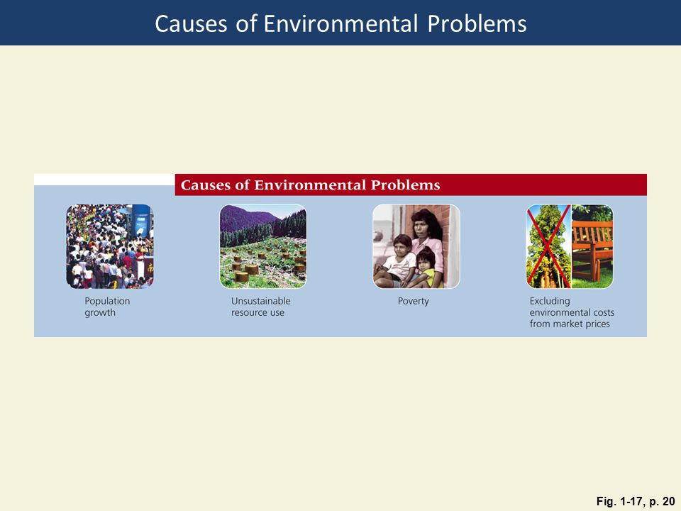 "causes of environmental problems Multiple chemical sensitivity can include a wide range of symptoms, which some people link to their environment it's also known as ""environmental illness,"" sick building syndrome,"" or."