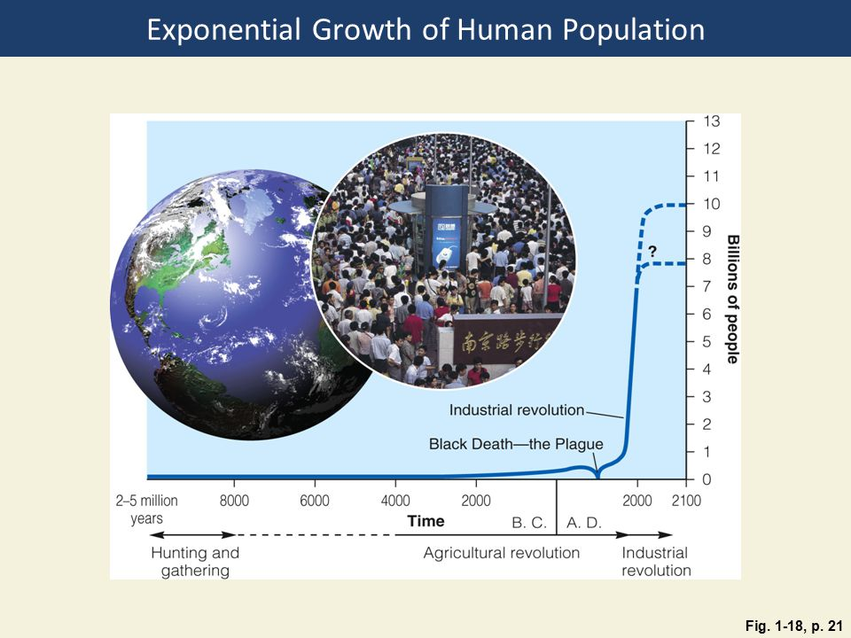 Exponential Growth of Human Population