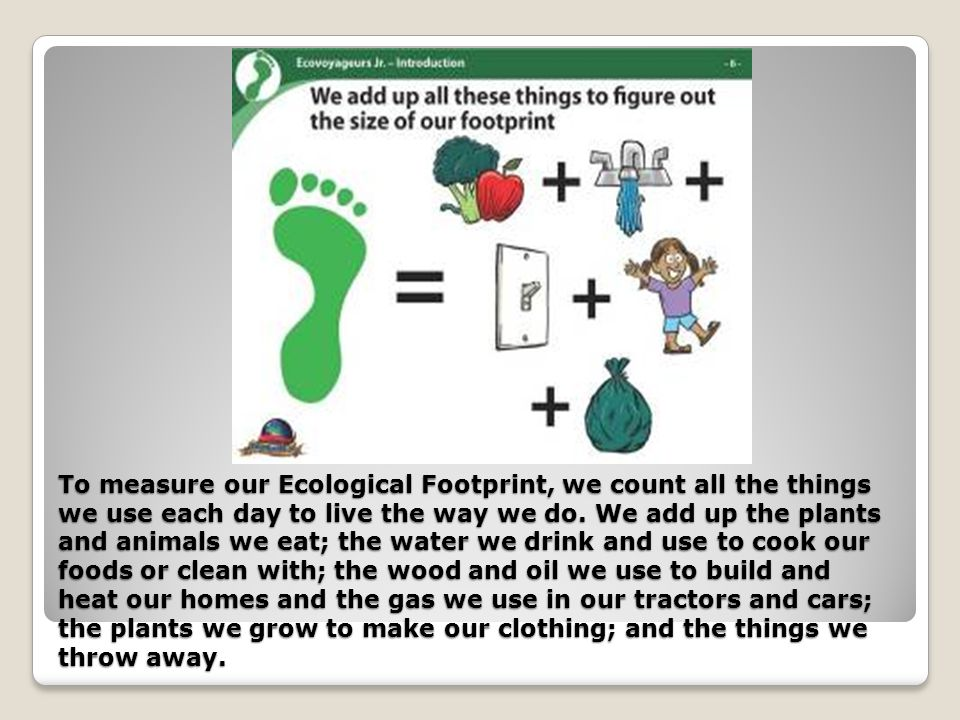 Ecological footprint count yourself in ppt video for What do we use trees for