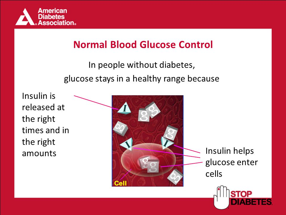 Normal Blood Glucose Control