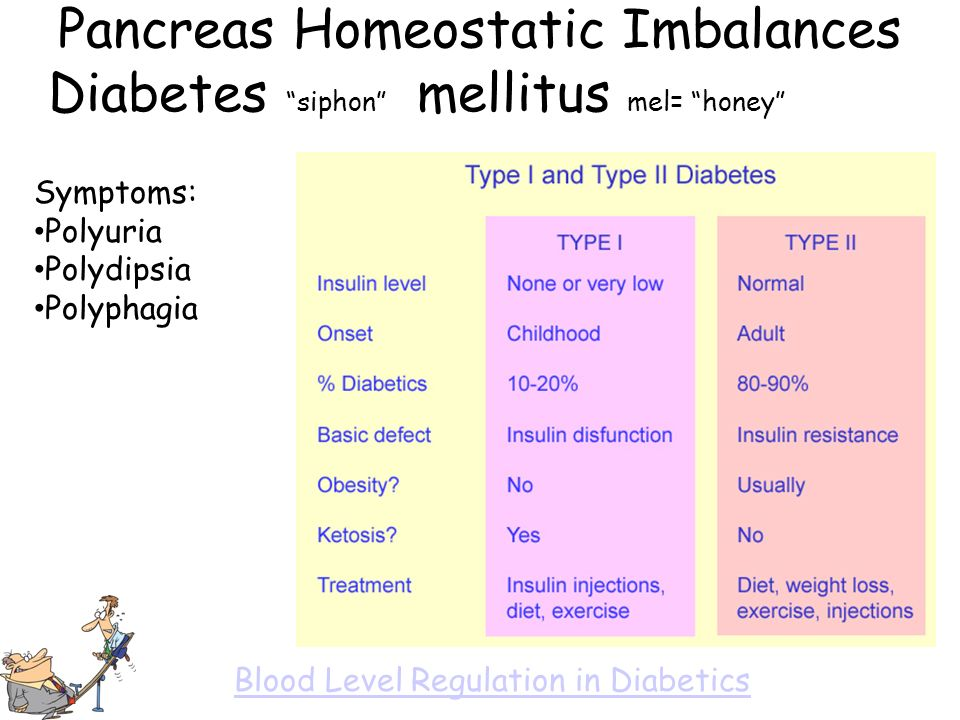 Pancreas Homeostatic Imbalances Diabetes siphon mellitus mel= honey