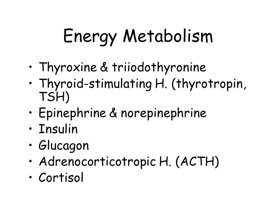 Energy Metabolism Thyroxine & triiodothyronine