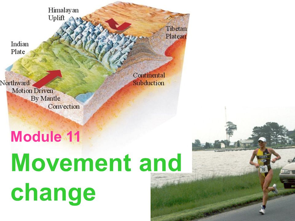 Module 11 Movement and change