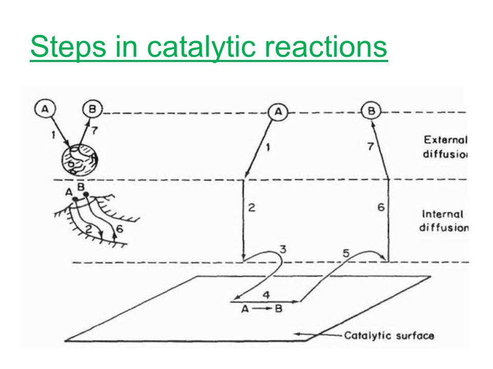 Steps in catalytic reactions