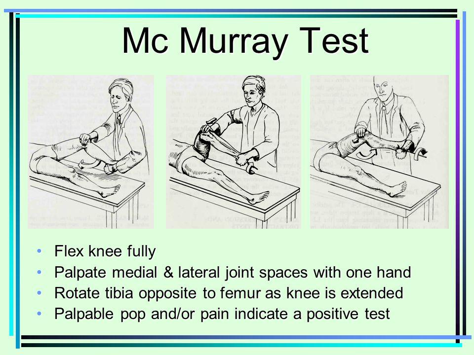 Anatomy Test Online