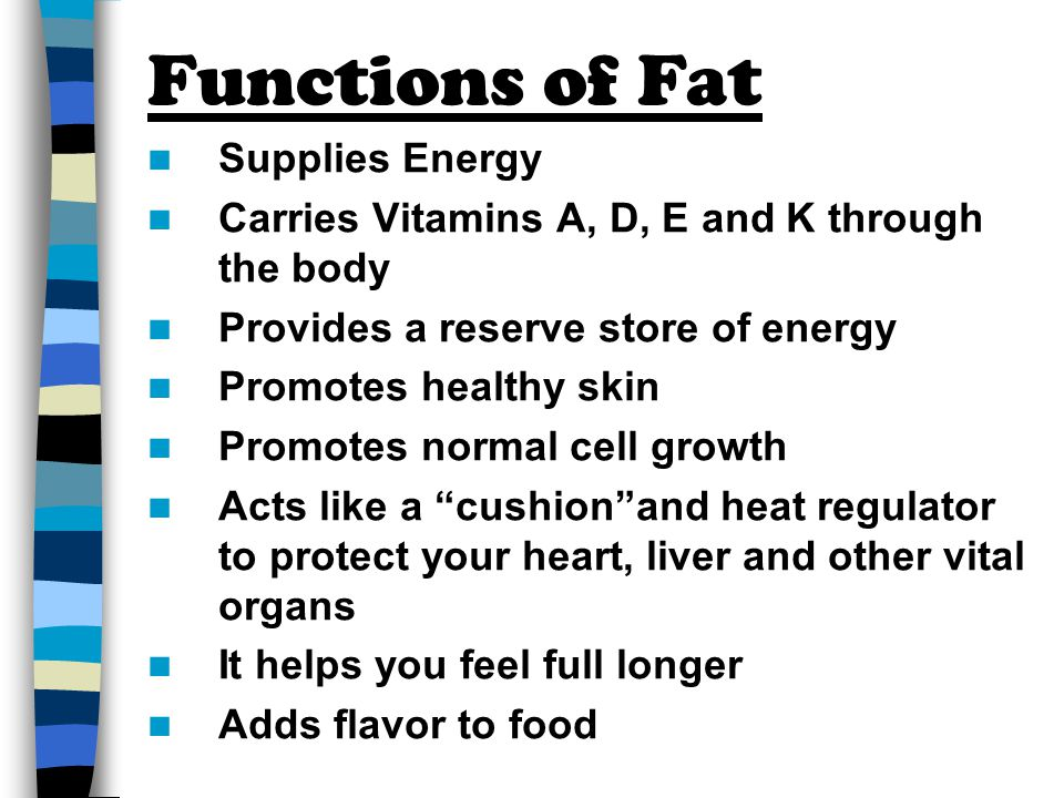 Functions of Fat Supplies Energy