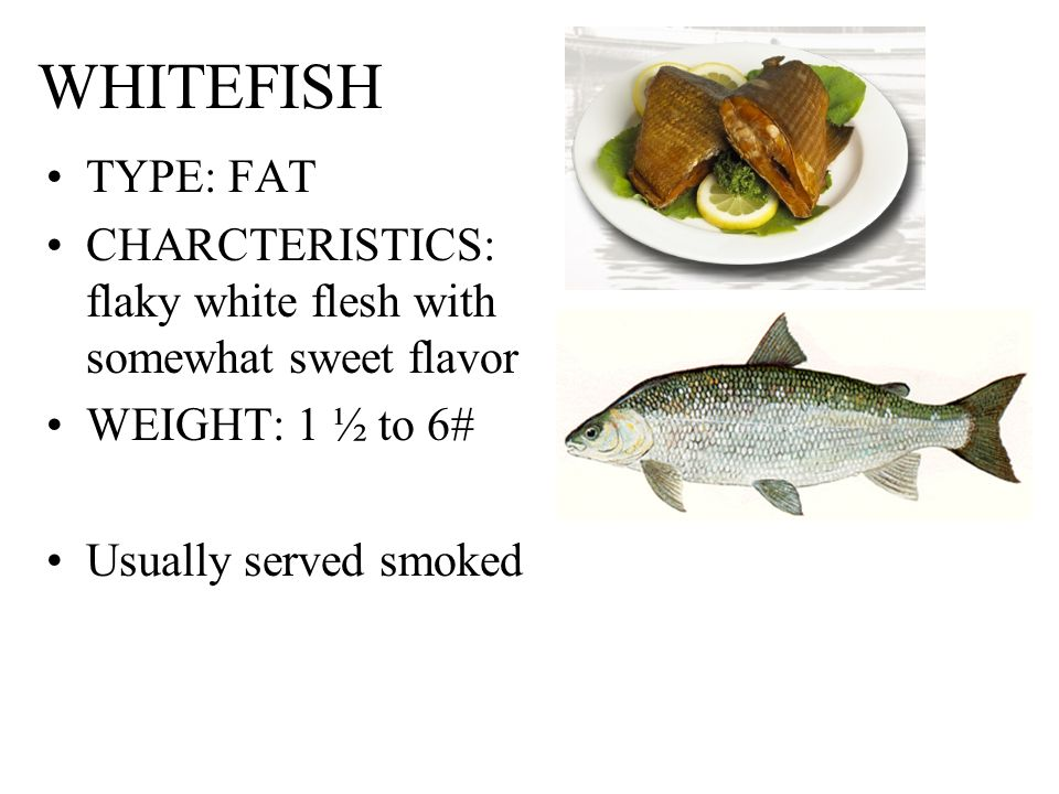 Understanding fish and seafood ppt video online download for White fish types