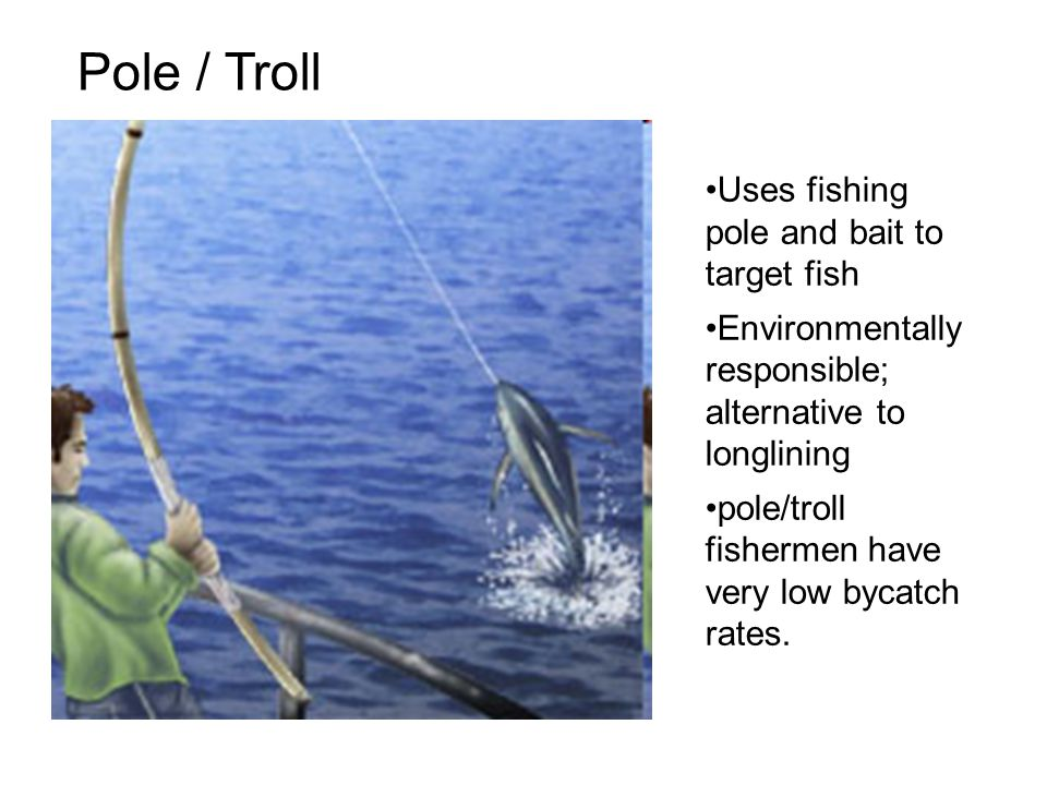 Fishing practices ppt download for Target fishing pole