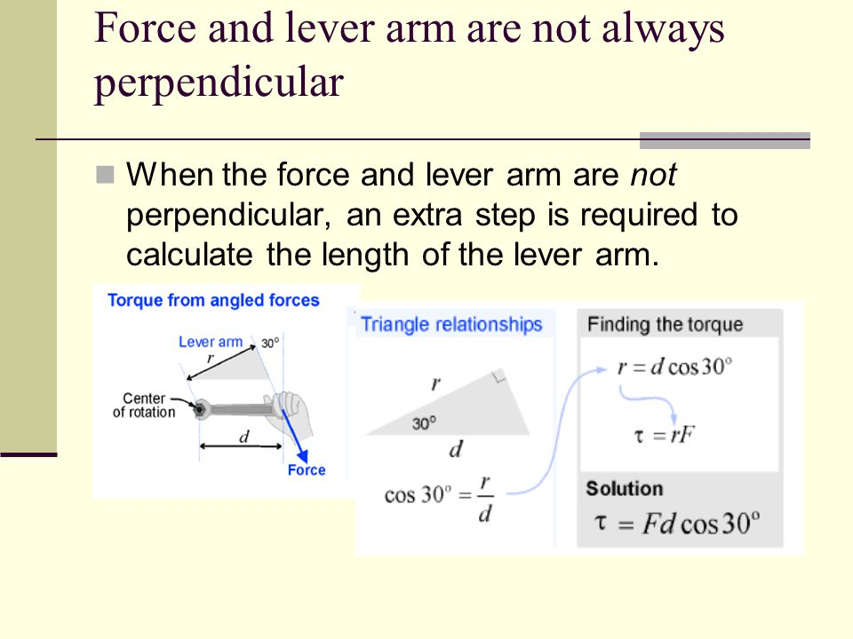 force and lever arm Lever arm a model for the lever in the human forearm click to enlarge introduction the human arm is an interesting example of a lever the force exerted by the biceps muscle is on the.