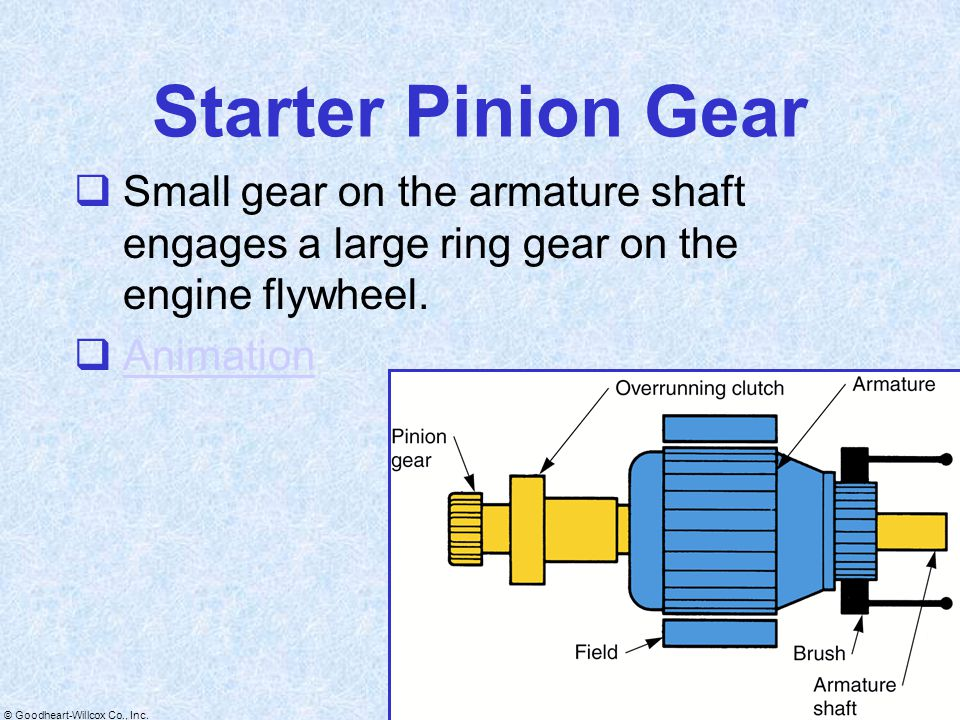 Starter Pinion Gear Small gear on the armature shaft engages a large ring gear on the engine flywheel.
