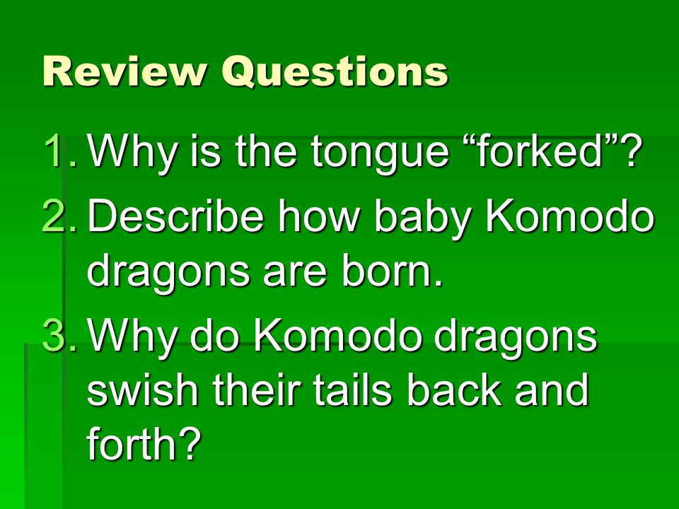 Why is the tongue forked Describe how baby Komodo dragons are born.