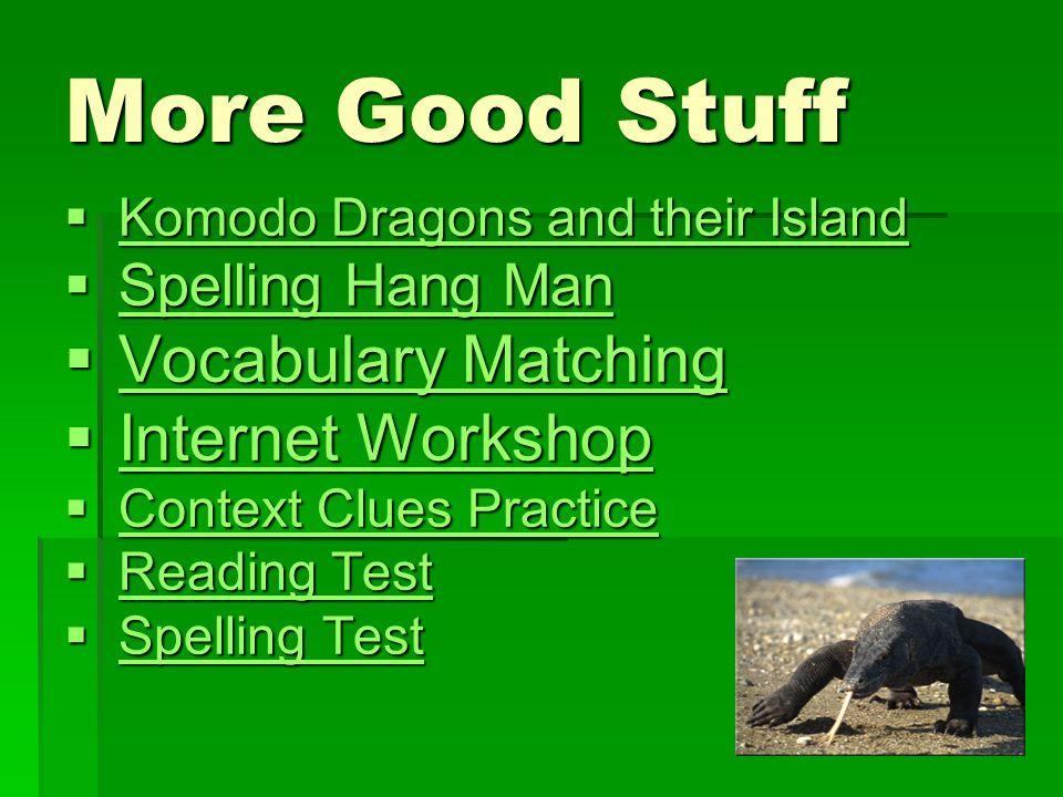 More Good Stuff Vocabulary Matching Internet Workshop