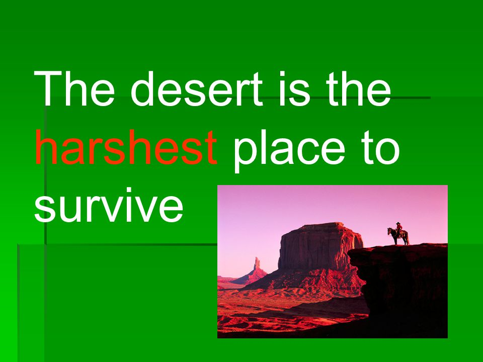 The desert is the harshest place to survive
