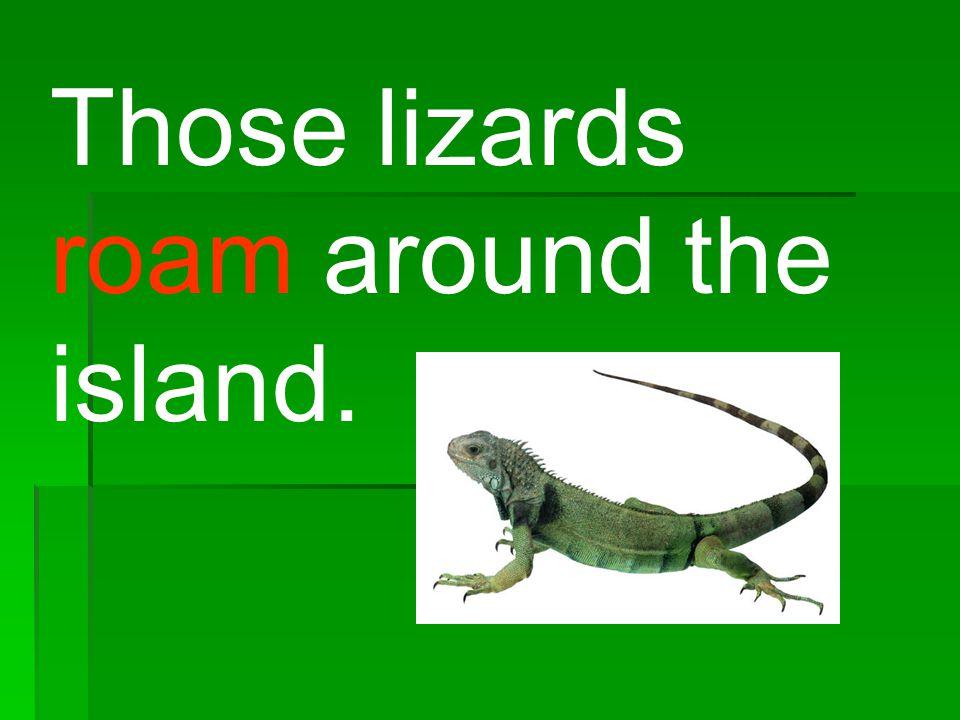 Those lizards roam around the island.