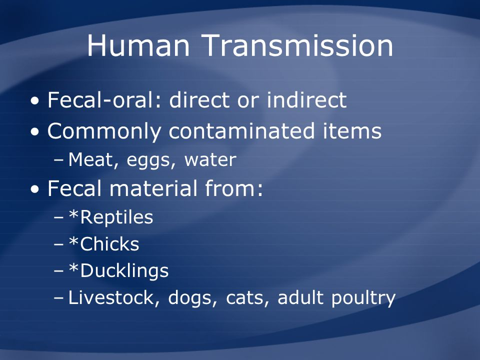 Human Transmission Fecal-oral: direct or indirect
