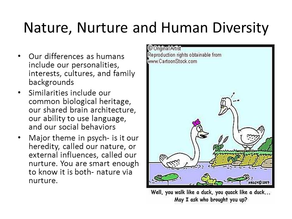 both nature and nurture influence human behaviour On human behavioral differences, the so-called nature-nurture debate (degler genetics seeks to identify and characterize both the genetic and the environmental sources of individual differences (phenotypic variance) in human behavior are influenced by both environmental and genetic factors and are most likely.