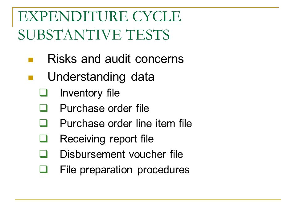EXPENDITURE CYCLE SUBSTANTIVE TESTS